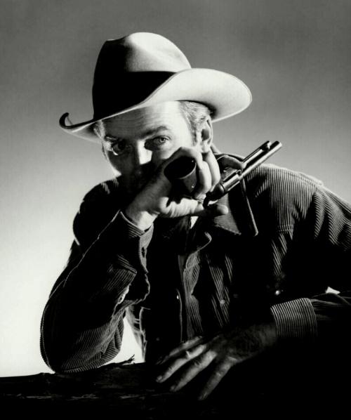 Stewart Laramie